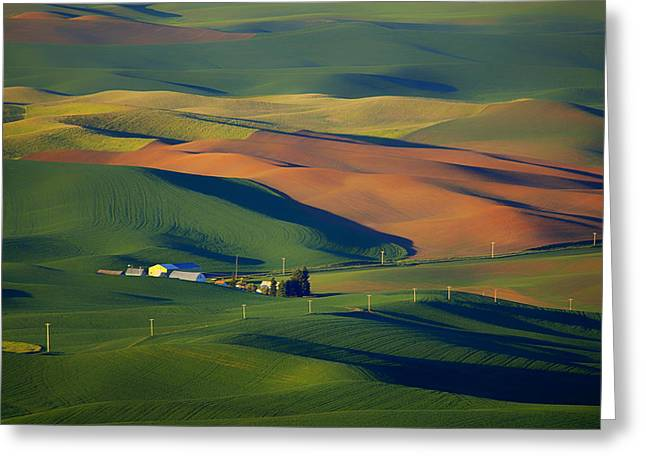 American Landscape Countryside Hills Rural Countryside California Greeting Cards - Palouse - Washington - Farms - #1 Greeting Card by Nikolyn McDonald
