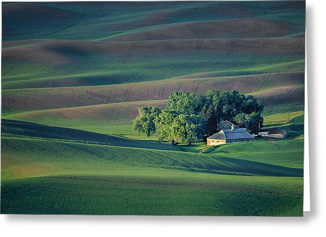 Palouse - Washington - Farms - #3 Greeting Card by Nikolyn McDonald