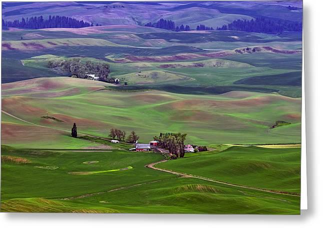 Cool Tones Greeting Cards - Palouse - Washington - Farms - #5 Greeting Card by Nikolyn McDonald