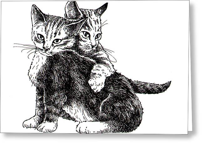 Kitten Prints Greeting Cards - Pals Greeting Card by Ben De Soto
