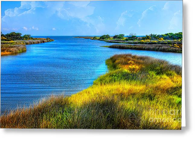 Creek Framed Prints Greeting Cards - Pamlico Sound on Ocracoke Island Outer Banks Greeting Card by Dan Carmichael