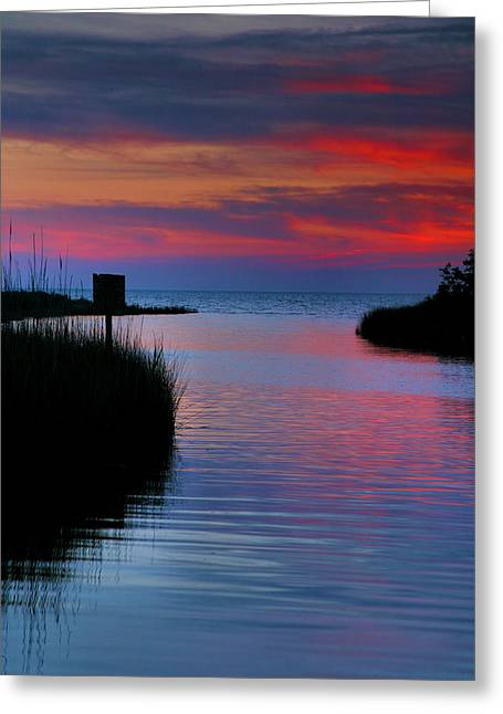 Sunset Prints Greeting Cards - Pamlico Sound Sunset Greeting Card by Steven Ainsworth