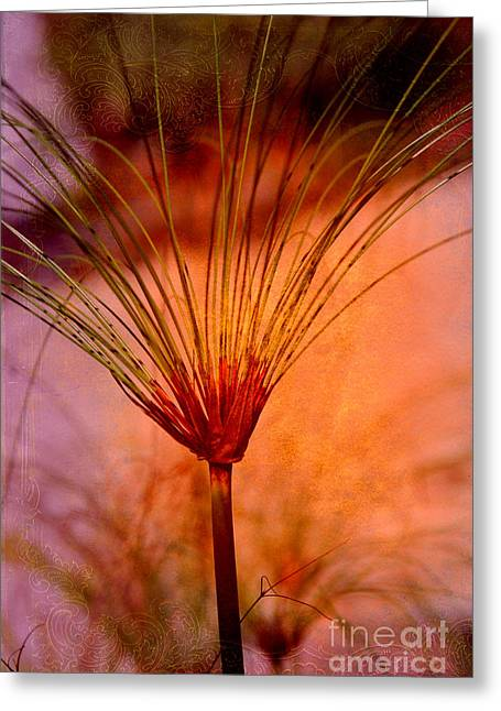 Pampas Grass Greeting Cards - Pampas Grass - II Greeting Card by Susanne Van Hulst