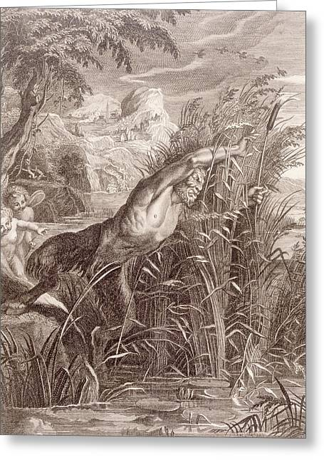Metamorphoses Greeting Cards - Pan Pursues Syrinx Greeting Card by Bernard Picart