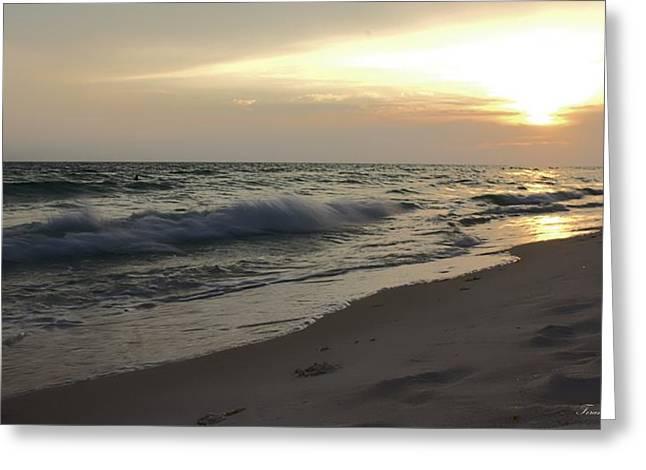 Panama City Beach Greeting Cards - Panama City Beach Golden Sunset Greeting Card by Debra Forand