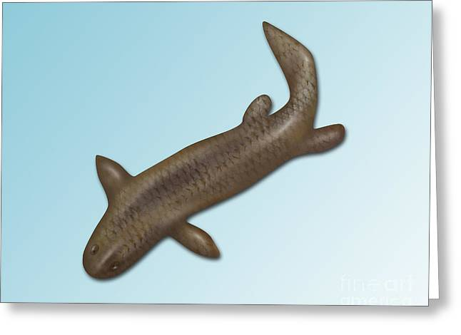 Fossil Art Greeting Cards - Panderichthys, Extinct Fish Greeting Card by Gwen Shockey