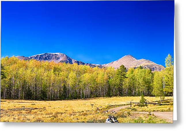 Panorama Autumn Bonanza Greeting Card by James BO  Insogna