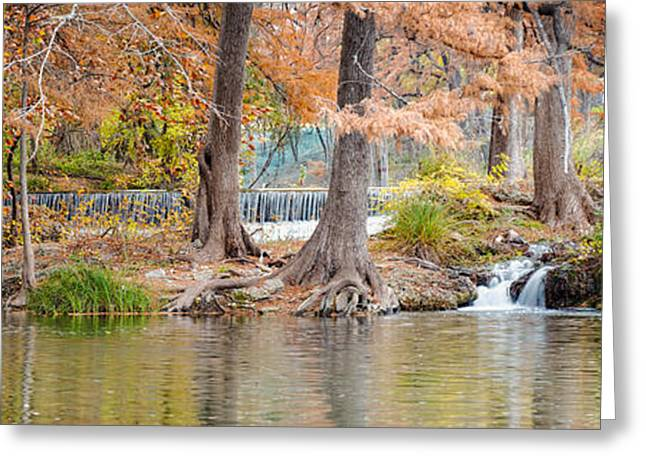 Tree Roots Photographs Greeting Cards - Panorama of Guadalupe River in Hunt Texas Hill Country Greeting Card by Silvio Ligutti