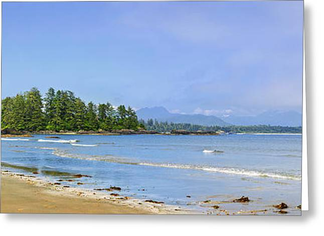 Ocean Panorama Greeting Cards - Panorama of Pacific coast on Vancouver Island Greeting Card by Elena Elisseeva