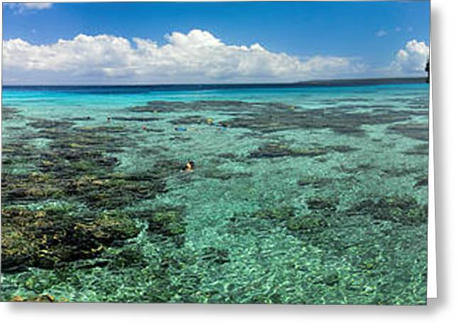 Ocean Panorama Greeting Cards - Panorama of Snokeling Beach in New Caledonia Greeting Card by David Smith
