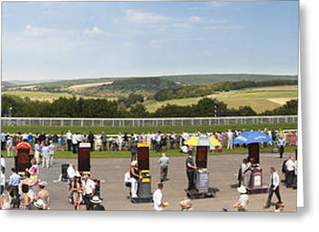 Race Horse Greeting Cards - Panorama of the gordon enclosure race course and sussex downs at Greeting Card by Peter Noyce