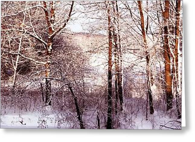 Snowy Day Greeting Cards - Panorama of Winter Wonderland Greeting Card by Rita Brown