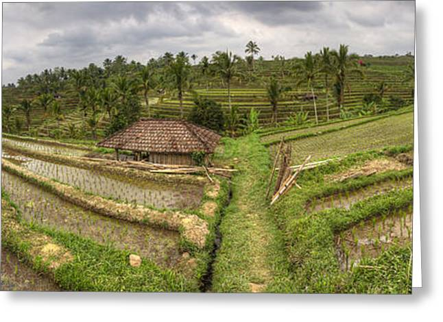Manual Greeting Cards - Panorama Rice Paddies Jatiluwih Bali Indonesia Unesco World Heritage Site Greeting Card by Bart De Rijk