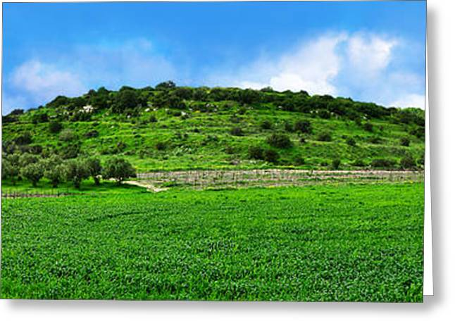 Olive Green Greeting Cards - Panoramic landscape Greeting Card by Nika Lerman