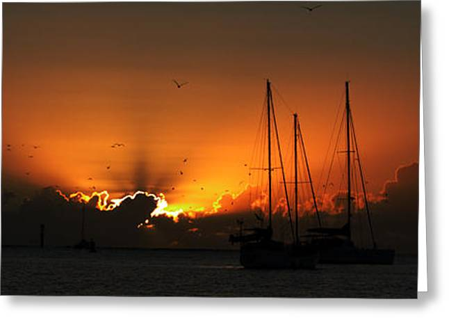 Sailboat Photos Greeting Cards - Panoramic Marine Splendor - Sunset. Greeting Card by Geoff Childs