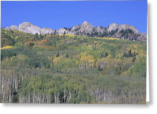 Panoramic Of Autumn Color Greeting Card by Panoramic Images