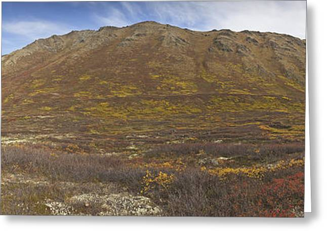 Chugach Greeting Cards - Panoramic Of Hanging Valley In Chugach Greeting Card by Ray Bulson