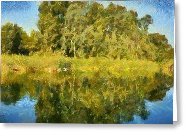 Panoramic Painting Of Ducks Lake Greeting Card by George Atsametakis