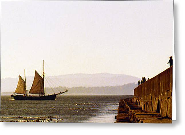 Schooner Greeting Cards - Panoramic Puget Sound Schooner 2 Washington Greeting Card by Mike Nellums