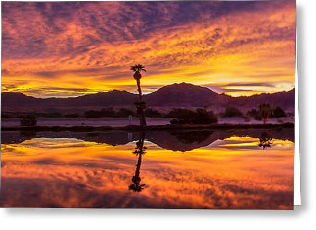 Wow Greeting Cards - Panoramic Sunrise Greeting Card by Robert Bales