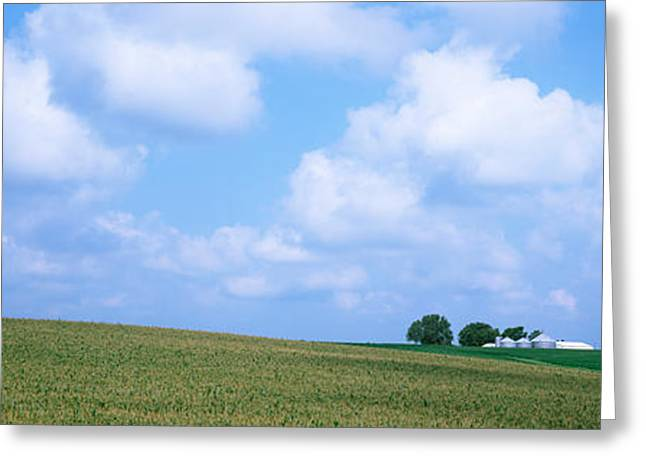 Soybean Greeting Cards - Panoramic View Of A Landscape, Marshall Greeting Card by Panoramic Images