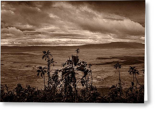 Black Lodge Greeting Cards - Panoramic View of Ngorongoro Crater BW Greeting Card by Darcy Michaelchuk