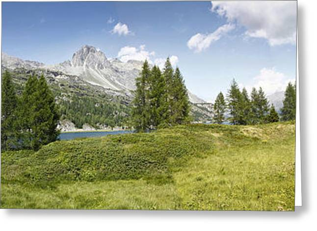 Upper Engadine Valley Greeting Cards - Panoramic view of Sils Lake - Switzerland - Europe Greeting Card by Scatena Artwork