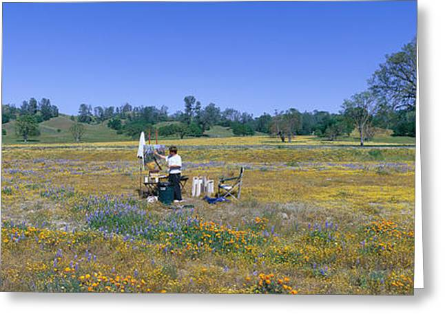 Rural Landscapes Greeting Cards - Panoramic View Of Spring Flowers Greeting Card by Panoramic Images