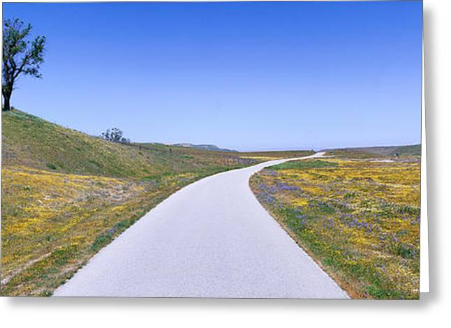 Rural Landscapes Greeting Cards - Panoramic View Of Spring Flowers, Tree Greeting Card by Panoramic Images
