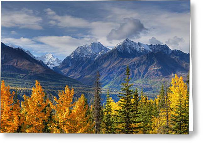 Hdr Landscape Greeting Cards - Panoramic View Of The Fall Foliage And Greeting Card by Lucas Payne