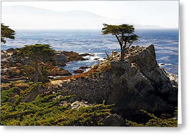 Foggy Ocean Greeting Cards - Panoramic View of the Pacific Coastline at Pebble Beach Greeting Card by George Oze