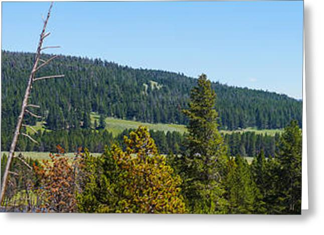 Mountain Valley Greeting Cards - Panoramic Yellowstone Landscape Greeting Card by Jennifer White