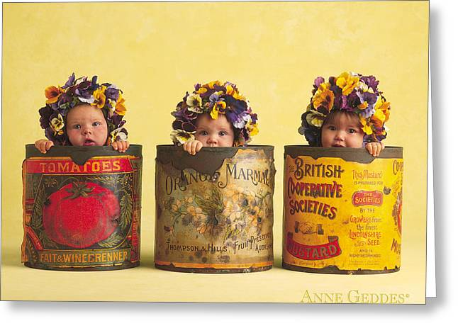 Babies Greeting Cards - Pansies Greeting Card by Anne Geddes