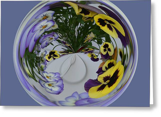 Floral Digital Art Greeting Cards - Pansy Series 502 Greeting Card by Jim Baker