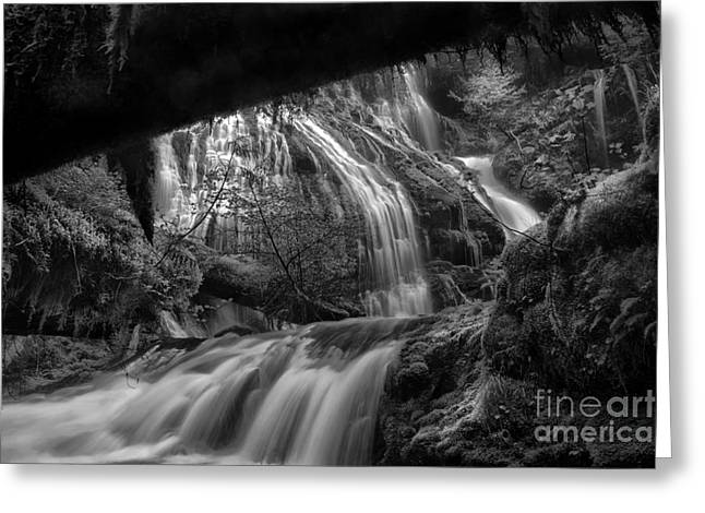 Waterfall Image Greeting Cards - Panther Falls II Greeting Card by Keith Kapple