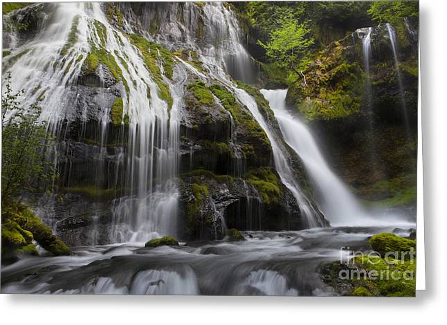 Waterfall Image Greeting Cards - Panther Falls Greeting Card by Keith Kapple
