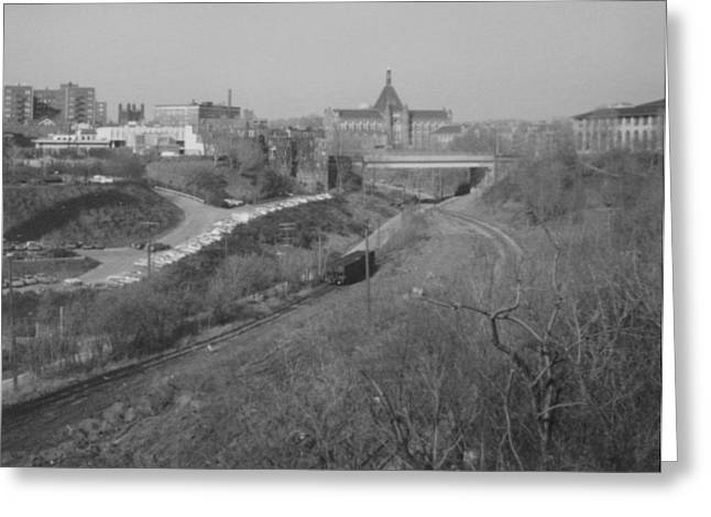Carnegie Museum Greeting Cards - Panther Hollow Pittsburgh PA Greeting Card by Joann Renner
