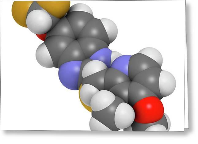 Pantoprazole Gastric Ulcer Drug Molecule Greeting Card by Molekuul