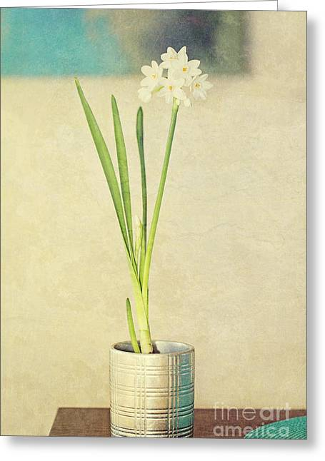 """indoor"" Still Life Digital Art Greeting Cards - Paper Whites on Table Greeting Card by Susan Gary"