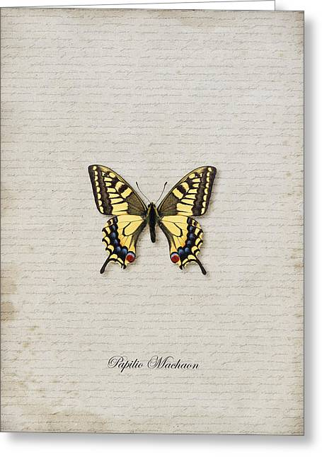 Danaus Genutia Greeting Cards - Papilio Machaon Butterfly Greeting Card by Lee Craggs