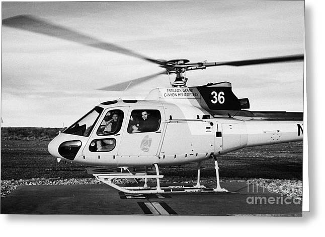 Helipad Greeting Cards - papillon helicopter tours full of passengers ready for takeoff helipad Grand canyon west airport Ari Greeting Card by Joe Fox