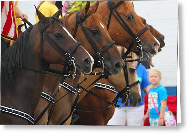 Labor Day Greeting Cards - Parade Horses Greeting Card by Dan Sproul