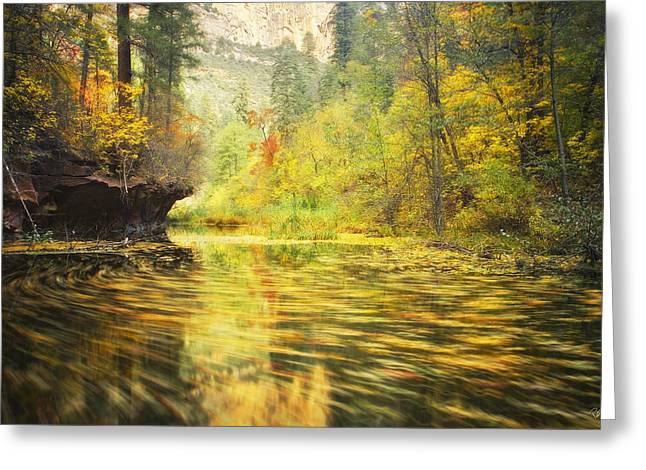 Oak Creek Greeting Cards - Parade of Autumn Greeting Card by Peter Coskun