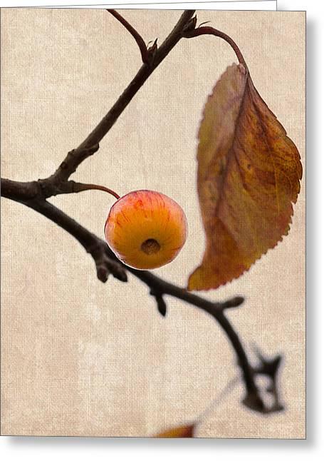 Fruit Tree Art Greeting Cards - Paradise Apple 10 - Square Greeting Card by Alexander Senin