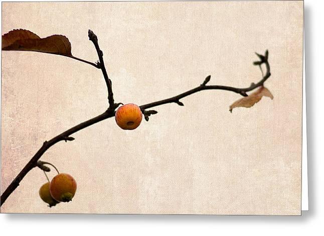 Fruit Tree Art Greeting Cards - Paradise Apple 4 Greeting Card by Alexander Senin