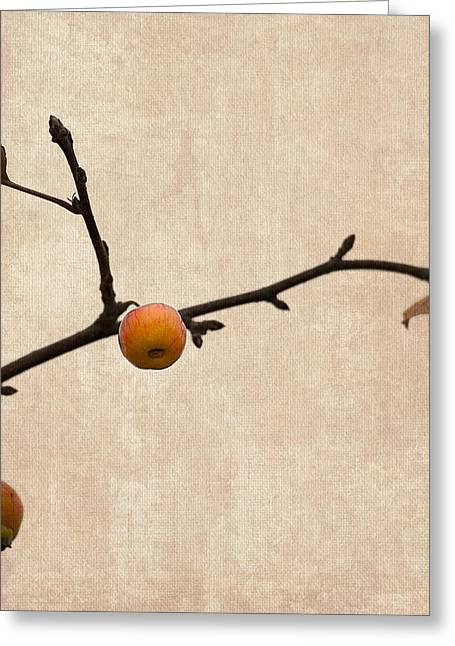 Fruit Tree Art Greeting Cards - Paradise Apple 4 - Square Greeting Card by Alexander Senin