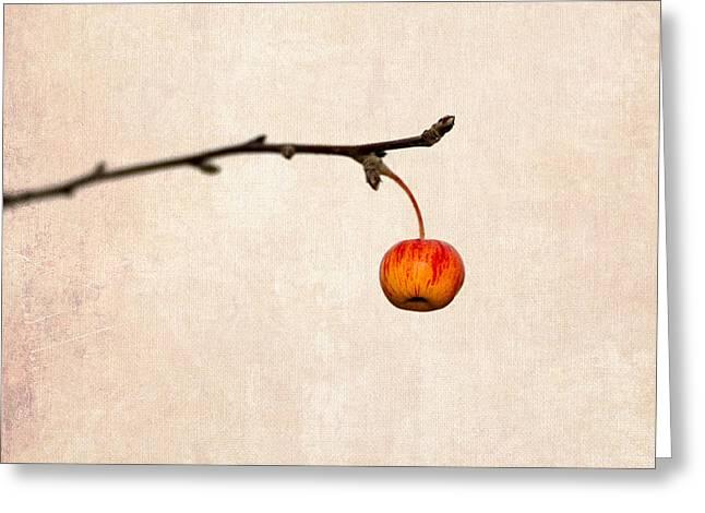 Fruit Tree Art Greeting Cards - Paradise Apple 5 Greeting Card by Alexander Senin