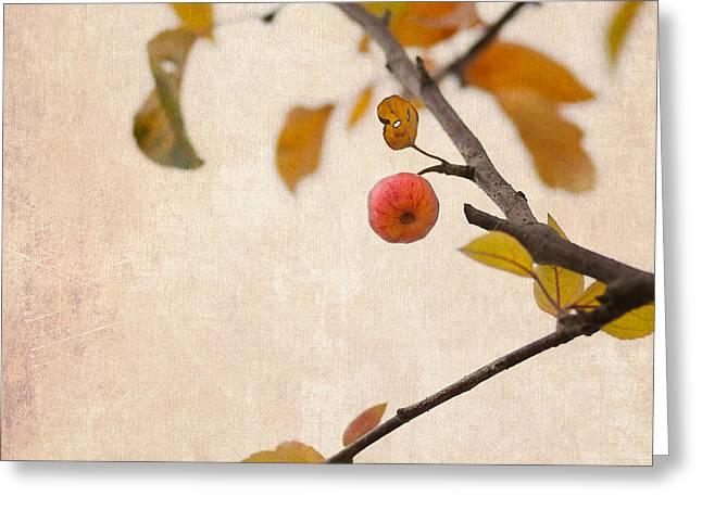 Fruit Tree Art Greeting Cards - Paradise Apple 6 Greeting Card by Alexander Senin