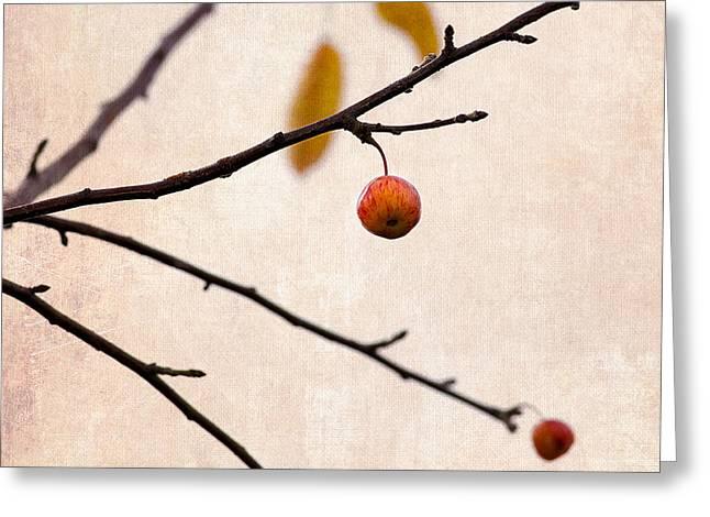 Fruit Tree Art Greeting Cards - Paradise Apple 7 Greeting Card by Alexander Senin