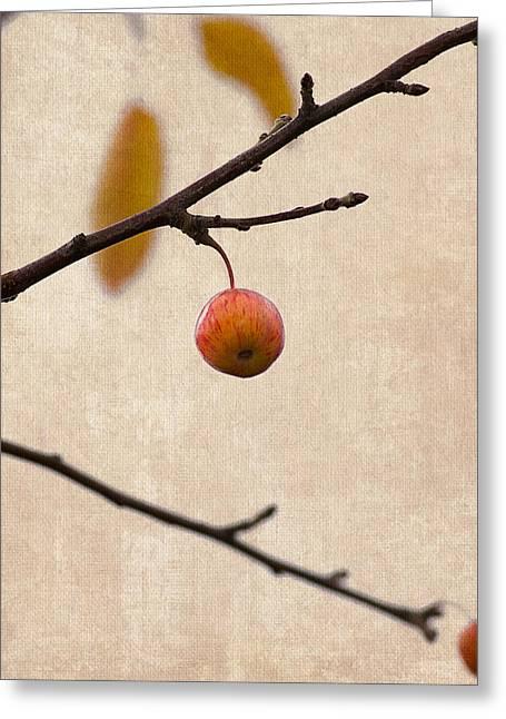 Fruit Tree Art Greeting Cards - Paradise Apple 7 - Square Greeting Card by Alexander Senin